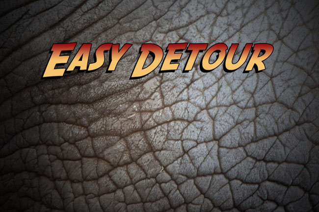 Easy Detour Travel software